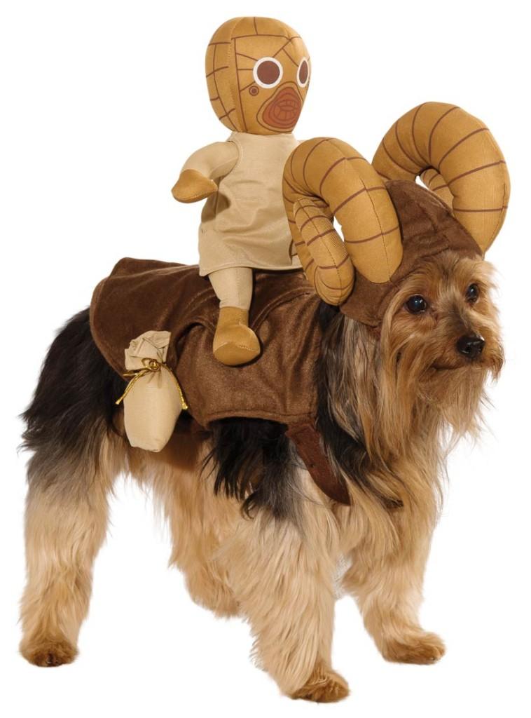 A dog wearing a Bantha costume