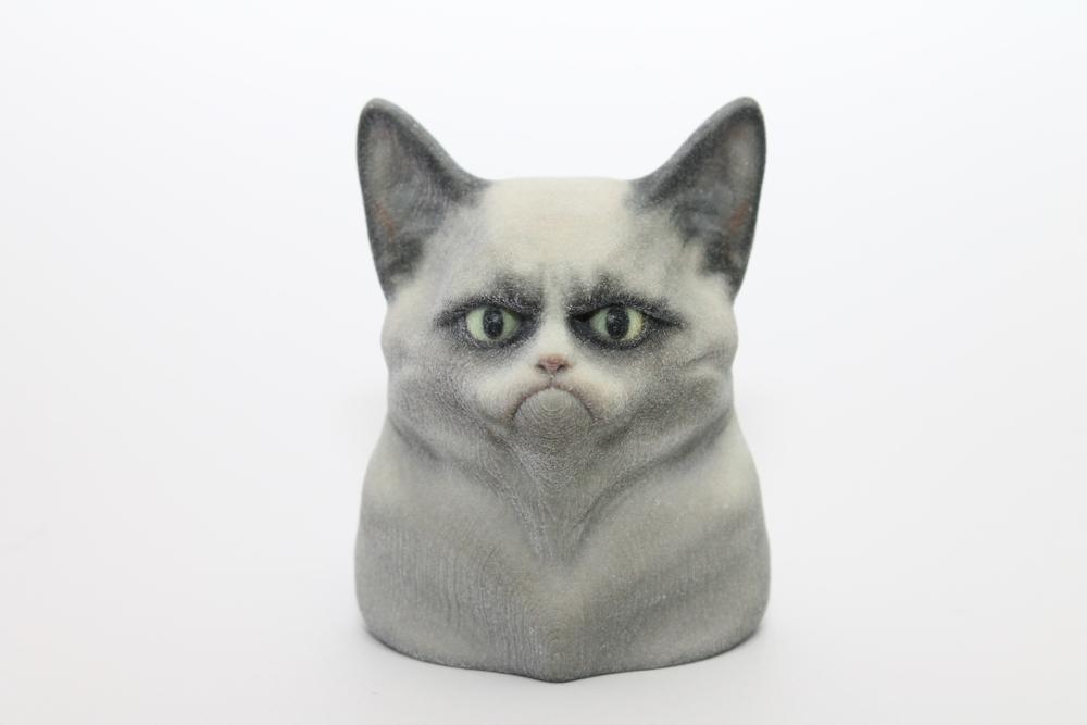 3D-Printed-Grumpy-Cat
