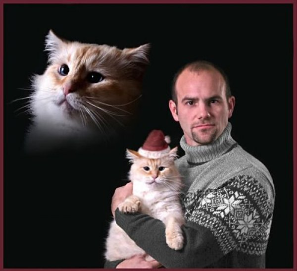 Snowflake Sweater Floating Cat Head Cat Family Photo