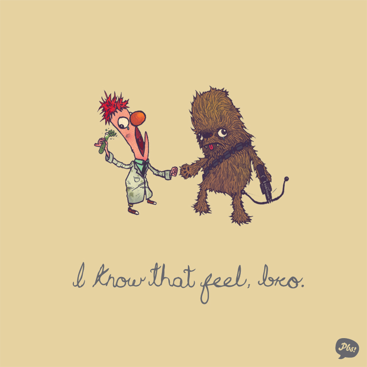 Beeker and Chewbacca