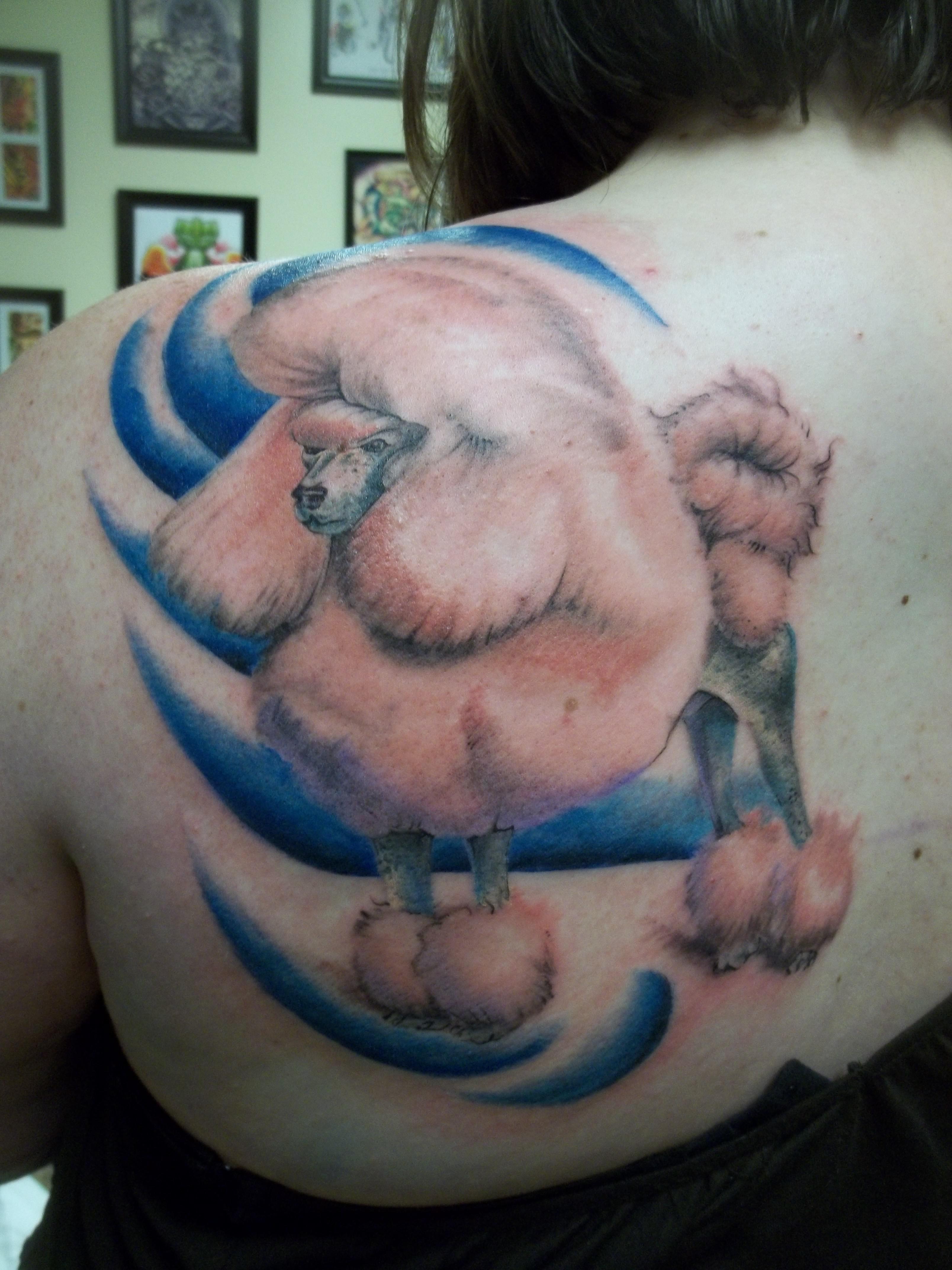 Pet Tattoos: Poodle