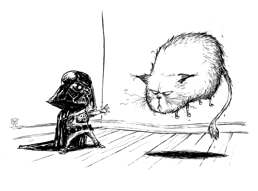 Kid Vader using the Force on a cat