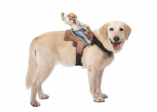 Cowboy Dog Rider Costume