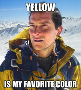 bear-yellow-is-my-favorite-color