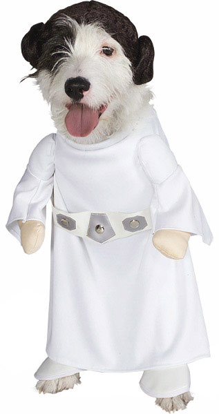 A terrier wearing a Star Wars Princess Leia costume