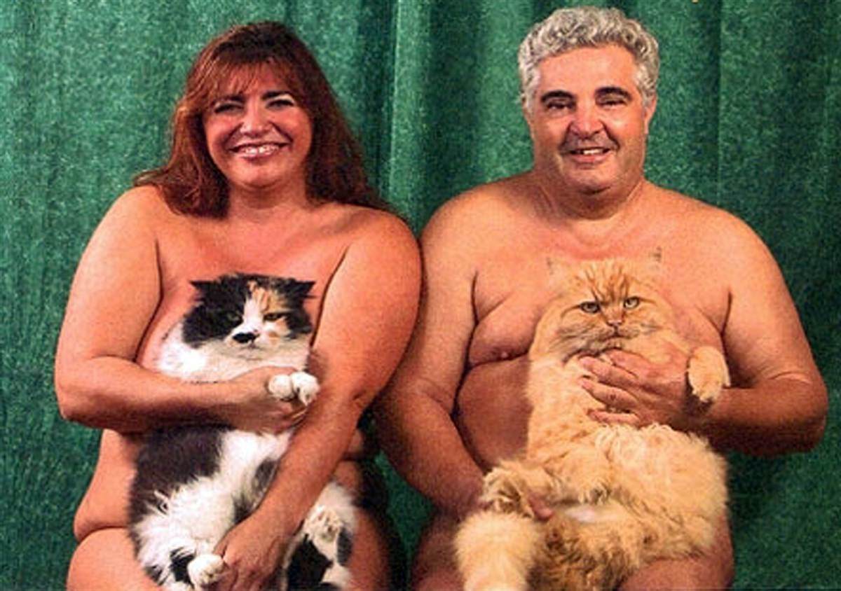 Cat Family Photos Save Our Eyes from Two Nudists
