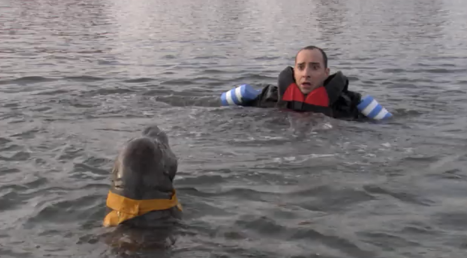 Buster and the seal in Arrested Development