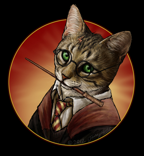 Harry Potter as Hairy Pawter