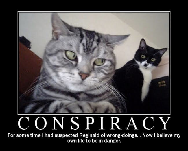 Conspiracy-cats