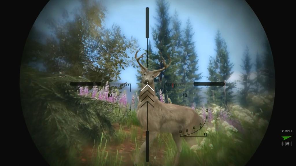 Bambi Deer Hunting