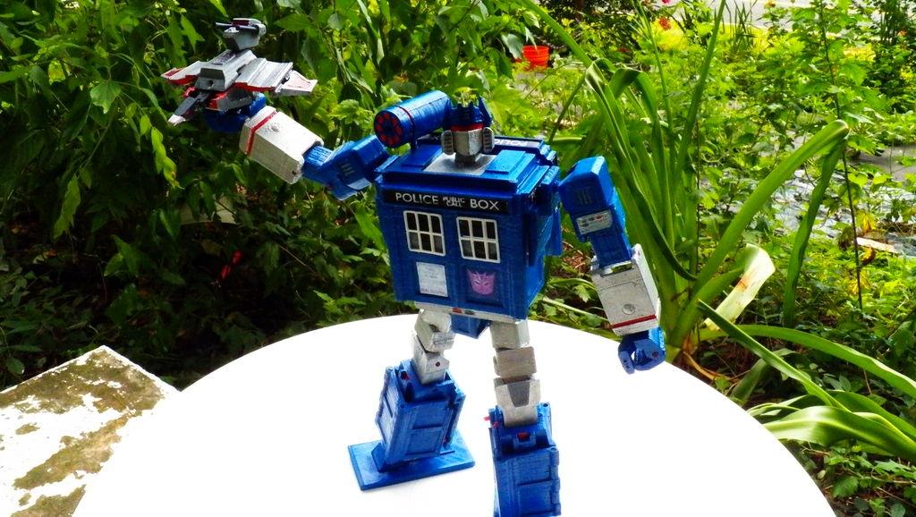 TARDIS-transformer