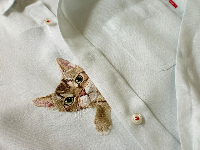 Cat Peeking out behind buttons