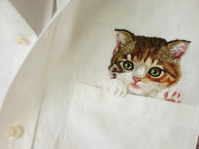 Kitten Waving Hi